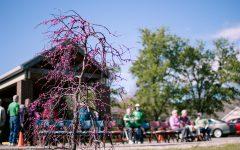 Kendal Unveils City's Second Arboretum