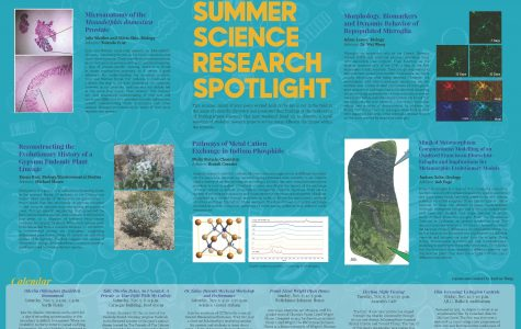 Summer Science Research Spotlight