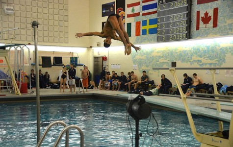 Junior Ben Miyamoto dives in last weekend's meet against the Case Western Reserve University Spartans. The Yeomen fell while the Yeowomen prevailed in the meet.