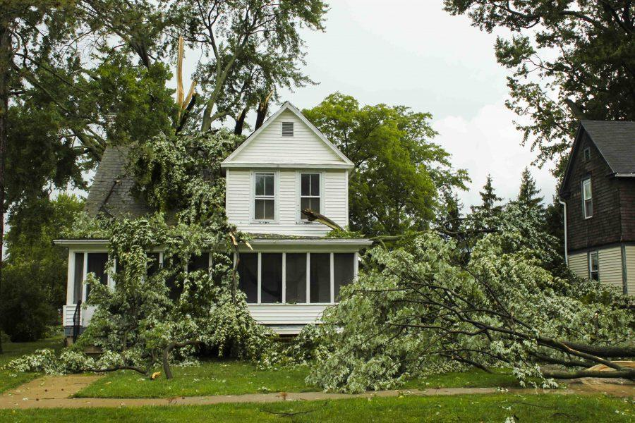 Several+trees+drape+the+house+at+70+North+Pleasant+Street+Saturday.+The+microburst+knocked+down+several+power+lines+and+left+over+3%2C000+Oberlin+residents+without+power.