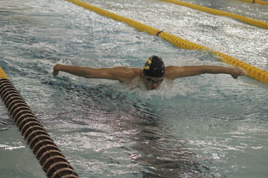 First-year Michael Lin swims the butterfly leg of the 200-yard individual medley. Lin logged one of the top-10 fastest times in school history with his 1 minute, 59.73 second finish in Oberlin's meet against the Ohio Northern University Polar Bears last Saturday.