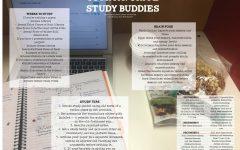 Your Favorite Study Buddies