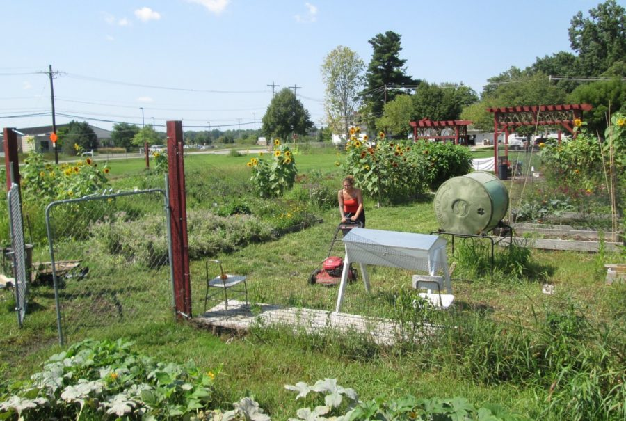 Legion Community Garden Faces Uncertain Future