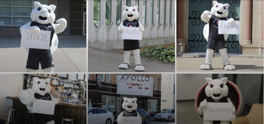 """Sports Editors: """"Yeobie"""" for Albino Squirrel Mascot"""