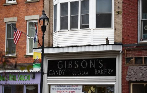 Gibson's Bakery Files Cross-Appeal