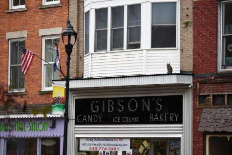 Gibson's Bakery Files Cross-Appeal