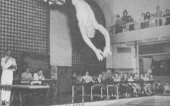 Now Empty, Crane Pool Symbolizes Oberlin's Progressive History