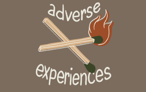Did you have any adverse experiences that you would like to expand upon?