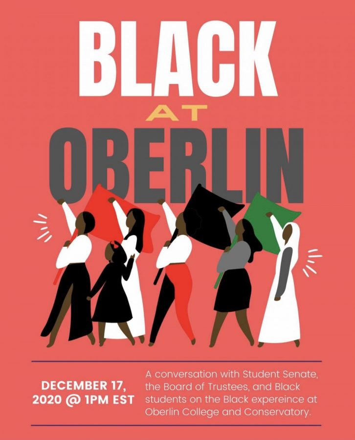 Student Senate worked to educate the Board of Trustees on the Black experience at Oberlin during a December panel discussion.