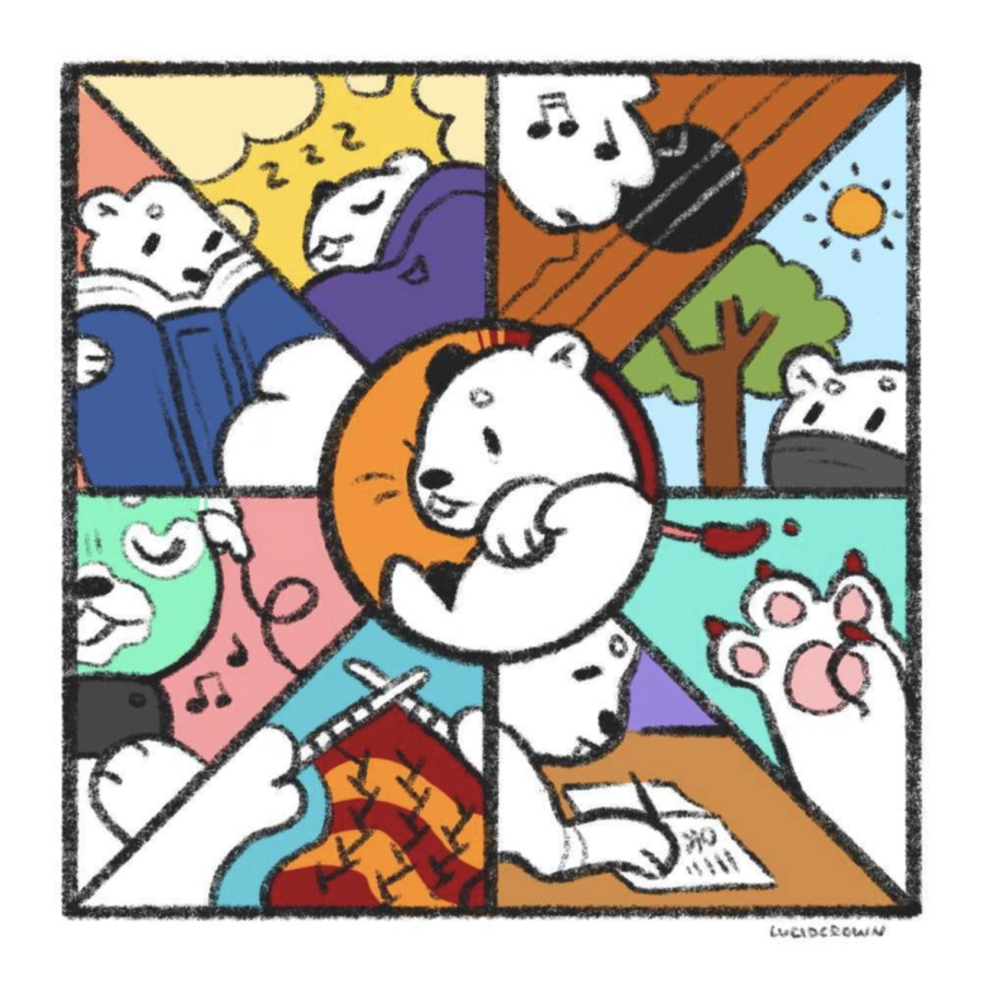 Clair Wang Staff Illustrator